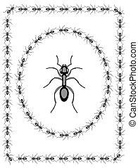 蟻, 昆虫, デザイン
