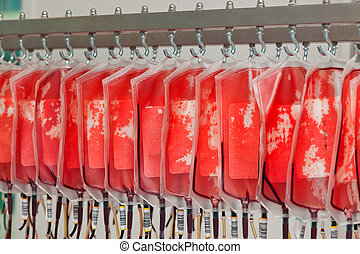 血液, ......的, 捐贈人, 血液, 在, the, 血液, 實驗室
