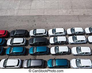 行, 在中, 新, 汽车