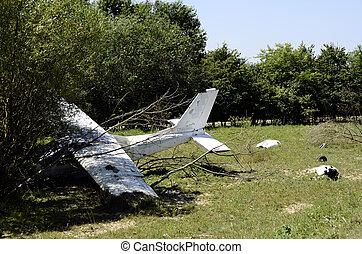衝突される, 白, 飛行機