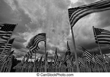 表すこと, flag., 整理, アメリカ人, 個人, 旗, それぞれ, 愛国心が強い, 兵士, 落ちている