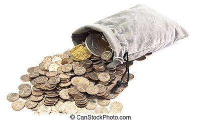 袋に入れなさい, コイン