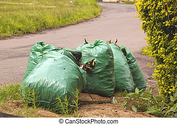 袋, gargbage, collectionon, 待つこと, 側, 道