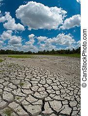被爆裂, 沼澤地, 干燥, 床