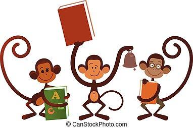 被隔离, 猴子