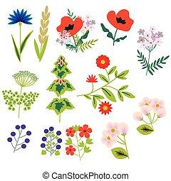 装飾用である, 花, セット