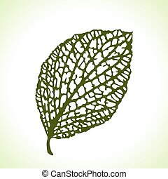 装飾用である, 詳しい, 葉, isolated., マクロ, イラスト, 自然