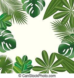 装飾用である, frame., 葉, の, トロピカル, plants., 隔離された, items.,...