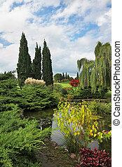 装飾用, 花, 池, 木
