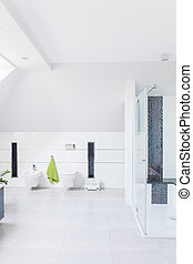 装飾, 現代, 浴室