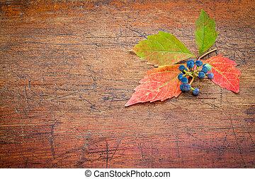 装飾, 背景, 秋