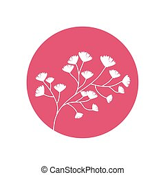 裝飾, 花, 自然, 圖象