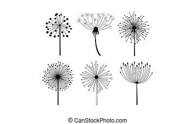 裝飾, 集合, seeds., 線性, 蒲公英, 明信片, 絨毛狀, theme., 矢量, 筆記本, 6, 植物, 花, 或者, 元素