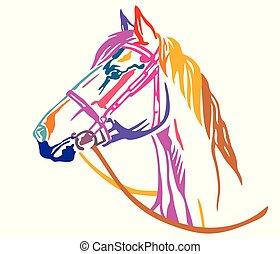 裝飾, 馬, 鮮艷, 插圖, 矢量, 6, 肖像