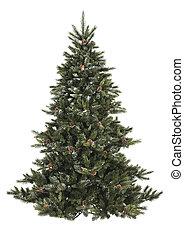 裸, 松, celebr, 背景, コーン, クリスマスツリー, ブランチ