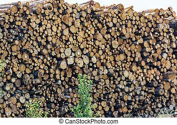 製材, ビュー。, 端, logs., たきぎの山, シラカバ, firewood., 倉庫