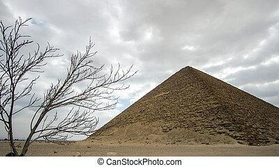 複合センター, 早く, 建物, エジプト, ランドマーク, ピラミッド, 赤, 歴史, saqqara