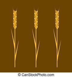 要素, 小麦