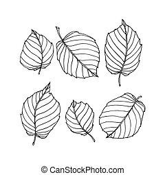 要素, 装飾用である, 単純である, 葉, 花, 木, セット, 装飾, パターン, ヘーゼルナッツ