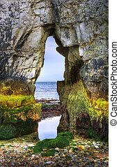 見る, ユネスコ, 岩, 古い, ジュラ紀, 海岸, harry, の上, イギリス\, 潮, 基盤, 低い,...