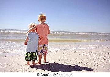見る, 海洋, 兄弟, 浜