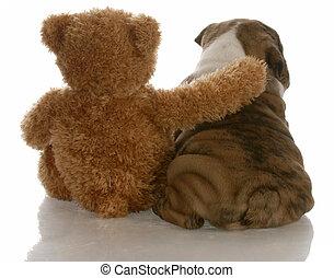 親友, -, english ブルドッグ, 子犬, モデル, ∥横に∥, 熊