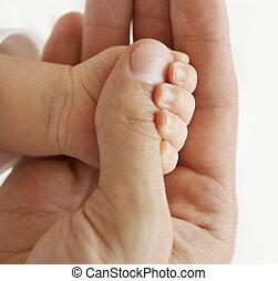 親, 家族, 手, 父, 新生, 生まれる, 子供, 赤ん坊, 新しい, 把握, 子供