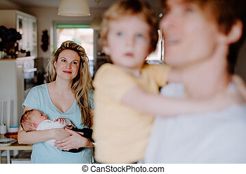 親, home., 息子, 小さい, 赤ん坊, 若い, 新生, よちよち歩きの子