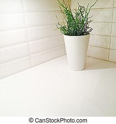 角落, 植物, 装饰, 厨房