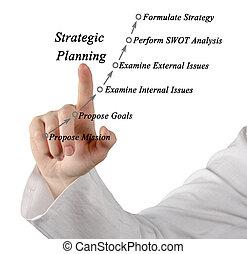 計画, 代表団, 戦略上である