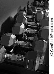 訓練, ダンベル, 重量, ジム, ジンクス, 装置