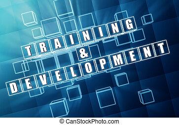 訓練, 以及, 發展, 在, 藍的玻璃, 立方