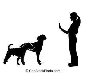 訓練, 狗