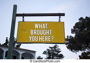 詞, 寫, 正文, 什麼, 帶來, 你, 在這裡, question., 生意概念, 為, 雄心, 罐頭, 是, 獲得, 所作, 決心, 木製的板, 懸挂, 懸挂, 郵寄, 想法, 消息, 感覺, 樹, 藍色, sky.
