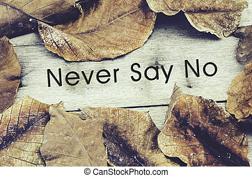 詞, 決不, 說沒有, 圍繞, 所作, 乾燥, 離開, .old, 木制, 背景, 以及, retro, 看, 主題