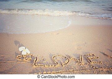 詞, 沙子, 海灘, 愛, 寫