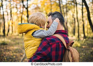 話し。, 成長した, 父, 息子, 秋の森林, 保有物, よちよち歩きの子