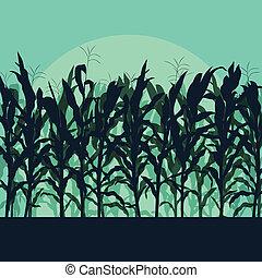 詳しい, 田舎, トウモロコシ, イラスト, 月光, フィールド, ベクトル, 背景, 風景