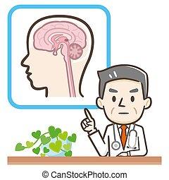 "説明, 医者, マレ, ""brain"", 医学"