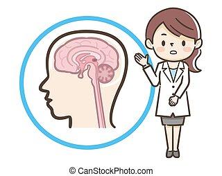 """説明, 医者, 女性, """"brain"""", 医学"""
