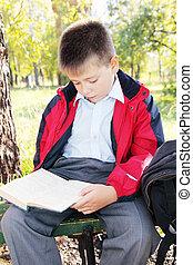 読書, 公園, 本, 子供
