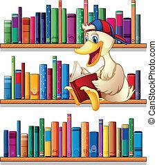 読書, 図書館, アヒル