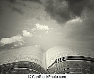 読書, 神聖
