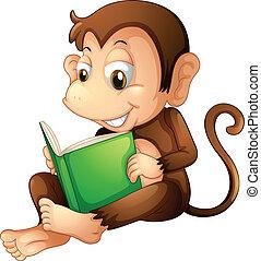 読書, 間, 本, サル, モデル