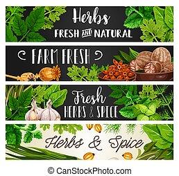 調味料, 料理, 自然, ハーブ, スパイス