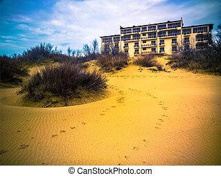 變量, 樓層, 旅館, 在中間, the, 沙丘