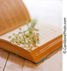 谷, 古い, 花束, 型, 浅い, フィールド, 深さ, 本, テーブル, 白い花, 開いた, ユリ