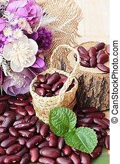 豆, 木, 健康, 赤い背景