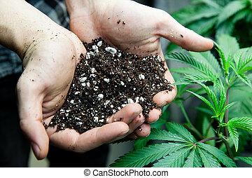 豊富, 保有物, 農夫, 土壌
