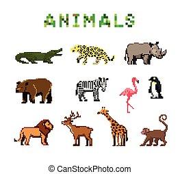 象素, 動物